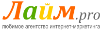 ЛАЙМ.про на конференции «Маркетинг успеха»