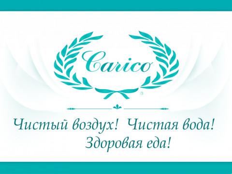 Дизайн сайта Carico - изящно и красиво!